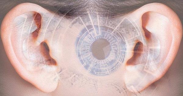 Az emberi fül, mint biometrikus azonosító